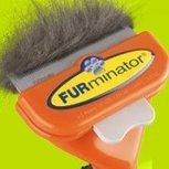 FURminator Inc. | Ask The Cat Doctor | Scoop.it