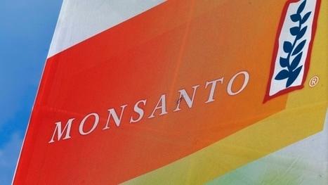 Germany's Bayer makes $62 billion offer for Monsanto | Grain du Coteau : News ( corn maize ethanol DDG soybean soymeal wheat livestock beef pigs canadian dollar) | Scoop.it