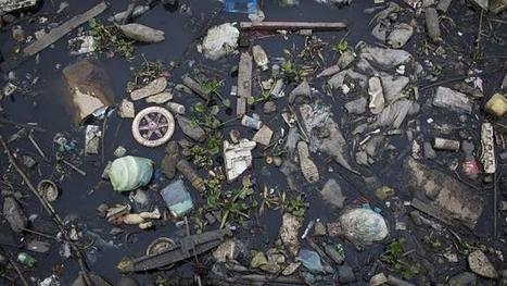 Olympic sailors upset with water pollution in Rio de Janeiro   Farming, Forests, Water, Fishing and Environment   Scoop.it