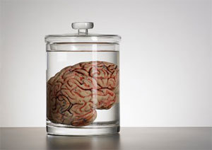 Beynimiz bir kavanozda ne kadar yaşayabilir? | Bilim - Fen | Scoop.it