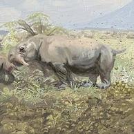 Desentierran un gigantesco retrete prehistórico, el más antiguo del mundo   4º de ESO. Bloque 3: La evolución de la vida   Scoop.it
