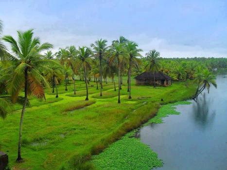 Kerala Backwaters: A Nature's Delight Summer Holiday Destination   Golden Chariot Train Blog   The Golden Chariot –Discovering the Best Of The South   Scoop.it