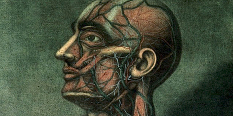 Awesomely Gross Medical Illustrations From the 19th Century | Science | WIRED | Health Trends and Advancements | Scoop.it