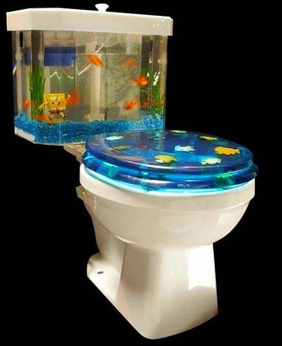 Fish N' Flush Toilet Aquarium | No sabia que era imposible,,, y lo hice :-) | Scoop.it