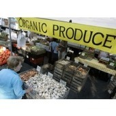 Organic Produce Now Accounts for 12% of Sales in U.S.   Business News & Finance   Scoop.it