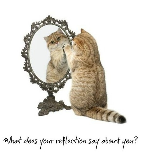 What Does Your Reflection Tell You? I Ali Rodriguez | Entretiens Professionnels | Scoop.it