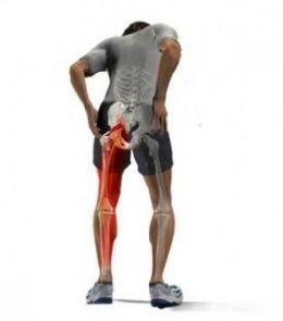 Symptoms of Sciatica? | Ashutosh Orthopaedic Hospital | Scoop.it