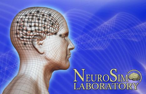 NeuroSim LAB - Thomas D. Parsons, PhD   Digital Delights - Avatars, Virtual Worlds, Gamification   Scoop.it
