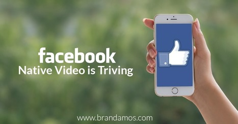 Facebook's Native Video Is Thriving | Photography | Scoop.it