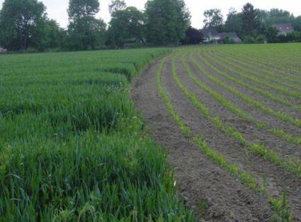 Dossier > Qu'est-ce que l'érosion des sols ? | S.V.T : l'Homme responsable de son environnement | Scoop.it