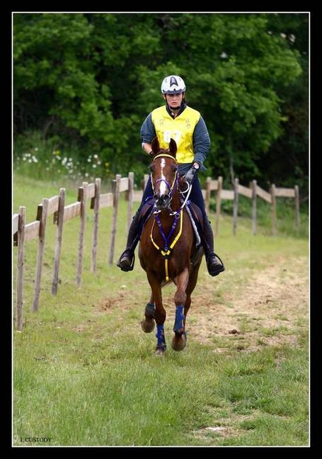 Laurent Custody's Photos | Endurance Castelsagrat 2013 | Cheval et sport | Scoop.it