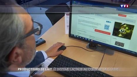Producteurs de lait en colère : décryptage du système Lactalis - TF1 Le journal de 20h | Le Fil @gricole | Scoop.it