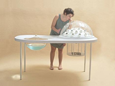 Fungi Mutarium : cultiver un champignon comestible pour recycler le plastique ! | recyclage créatif | Scoop.it