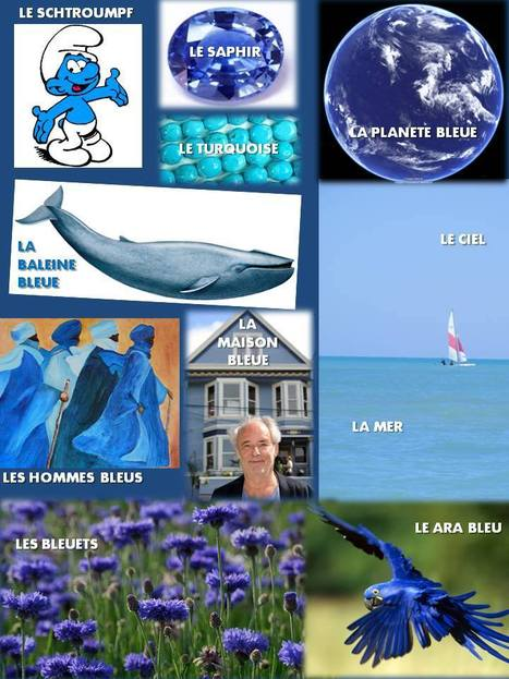 A1 - Bleu comme... | FLE | Scoop.it