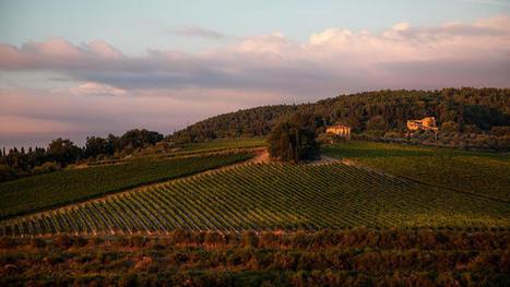 Antinori: The Italian nobles who became #wine revolutionaries   Vitabella Wine Daily Gossip   Scoop.it