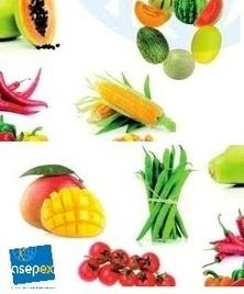 Le Sénégal en Allemagne pour le Fruit Logistica 2016 ! | SEN360.FR | Fruits & légumes à l'international | Scoop.it