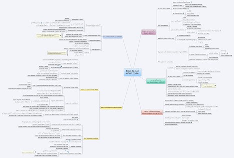 Bilan de mon MOOC ITyPA | SocialMediaDesign | Scoop.it