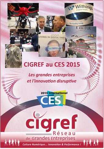 Les grandes entreprises et l'innovation disruptive | Cigref | Entretiens Professionnels | Scoop.it