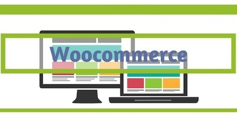 Woocommerce: 10 extensiones buenas, bonitas y gratuitas para tu Ecommerce | Links sobre Marketing, SEO y Social Media | Scoop.it