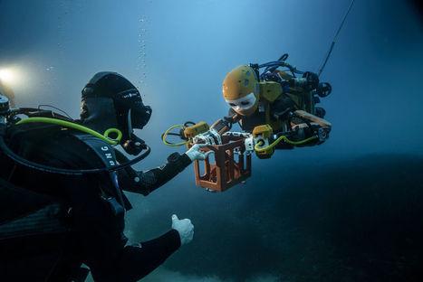 Les secrets de l'épave du Roi Soleil révélés par l'humanoïde OceanOne - H+ MAGAZINE | Actualités : systèmes d'information, ingénierie du logiciel, cloud, big data, robotique&systèmes autonomes... | Scoop.it