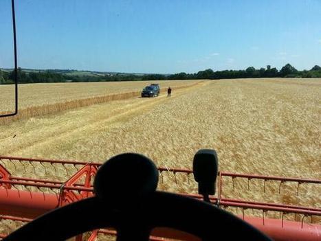 Having a nibble in Suffolk | UK #harvest13 | Scoop.it