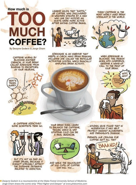 MIND in Pictures: Too Much Coffee | Cognition et al. | Scoop.it