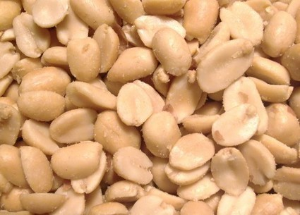 New US research findings might prevent peanut allergy | Australian Food News | Asthma & Allergies | Scoop.it