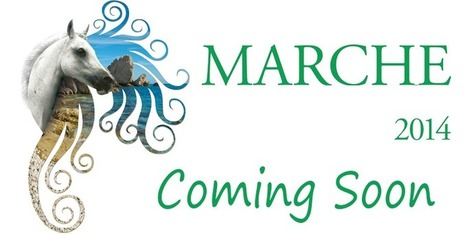 Marche Endurance Lifestyle 2014 | Le Marche another Italy | Scoop.it