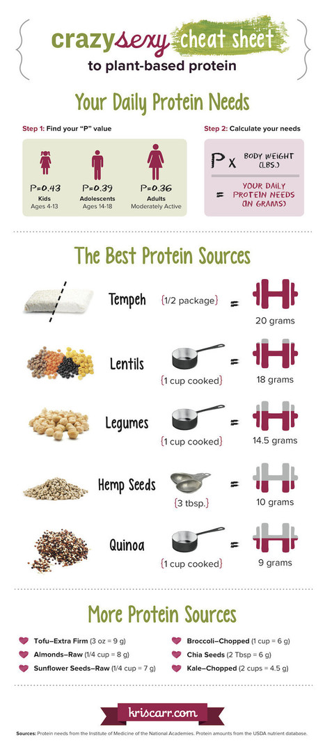 The Best Sources Of Plant-Based Protein (Infographic) | Lifestyle | Scoop.it