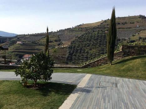 Portugal: tradición y modernidad en el Douro | vinhos | Scoop.it