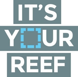 It's your reef - draw a line to #protect it ~ #GreatBarrierReef  #UNESCO pls listen! #SOSreef | Rescue our Ocean's & it's species from Man's Pollution! | Scoop.it