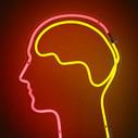 Le mindmapping ou les cartes heuristiques [Tutoriel] - Éducation & Numérique | Créer le projet numérique du collège. Théorie, outils TICE, scenarii pédagogiques... | Scoop.it