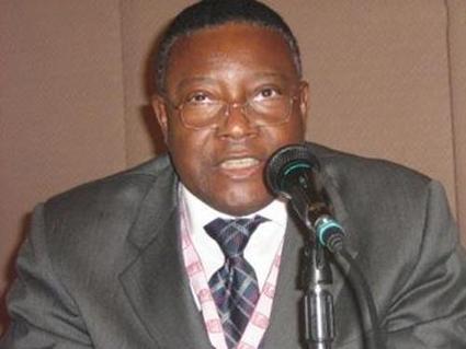 Les investissements dans les secteurs minier et non minier de la RDC évalués à plus de 29 milliards USD en 2013   CONGOPOSITIF   Scoop.it