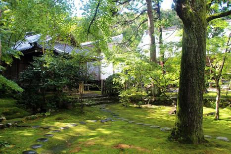 Chikurin-ji, au coeur de l'un des 88 temples du pèlerinage de Shikoku | JAPON youkoso | Scoop.it