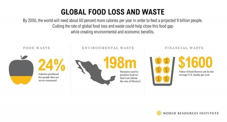 By the Numbers: Reducing Food Loss and Waste | WRI Insights | Food and Agriculture | Scoop.it