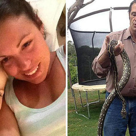 Mom awoken by cat finds python wrapped around 2-year-old daughter | Cats Australia | Scoop.it