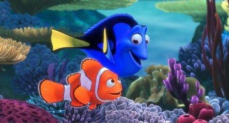 Finding Nemo in Malapascua Island, the Philippines   Philippine Travel   Scoop.it