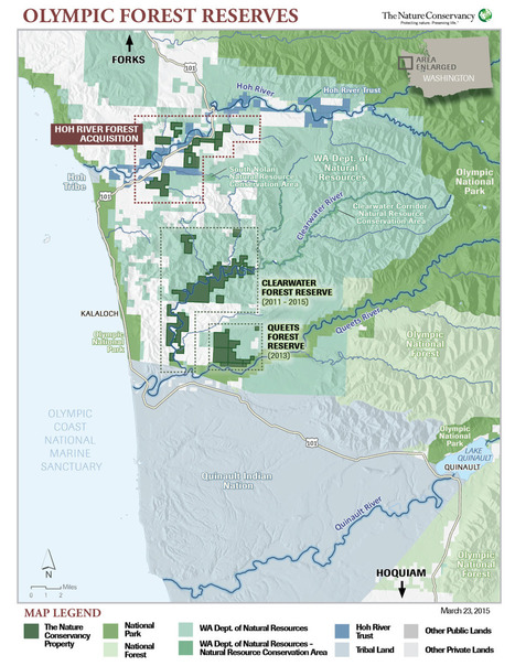 Conservancy buys $7M in timberland on Olympic Peninsula | Timberland Investment | Scoop.it