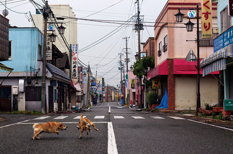 Fukushima: Inside the Exclusion Zone | arts visuels | Scoop.it