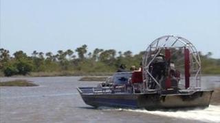 Watch now: The Everglades | Curious Kids | WGCU Public Media Video | Everglades Tour Guide | Scoop.it