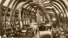 Shopping dans le ventre de la baleine | English Usage for French Insights | Scoop.it