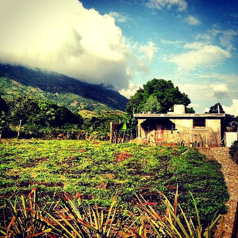 L'histoire des Antilles et de l'Afrique: MORNE-ROUGE EN HAITI, UN SYMBOLE DE LIBÉRATION DE L'ASSERVISSEMENT COLONIAL DANS LE MONDE   Social Media   Scoop.it