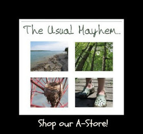 The Usual Mayhem: Dig Into Gardening   Annie Haven   Haven Brand   Scoop.it