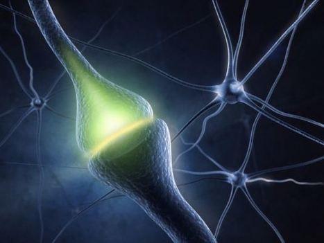 Vamos a jugar, tan sólo necesitas un cerebro y #SocialMedia | Personas 2.0: #SocialMedia #Strategist | Scoop.it