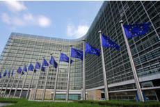 L'UE suspend l'importation d'agrumes d'Afrique du Sud   Agriculture : économie et développement.   Scoop.it