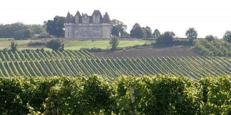 Viticulture : l'union des interprofessions de Bergerac et Duras est scellée | Agriculture en Dordogne | Scoop.it