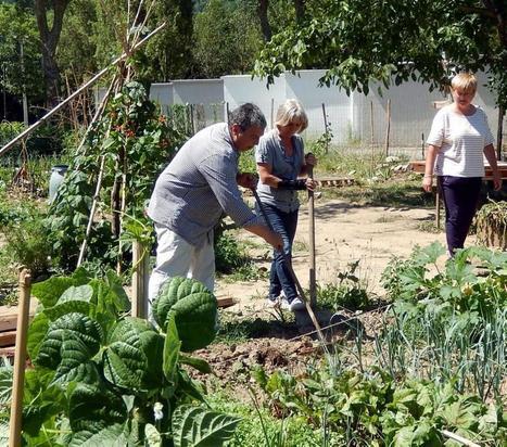 Au Foulon, les jardins citoyens gardent leur secret | Pamiers | Scoop.it