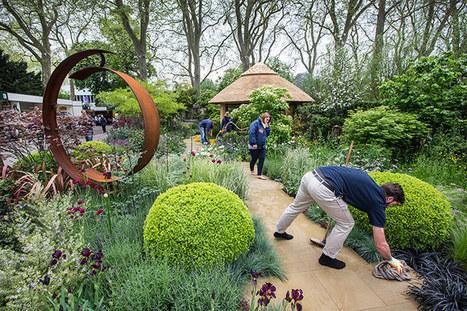 Chelsea flower show 2013 – in pictures   Garden Designer   Scoop.it