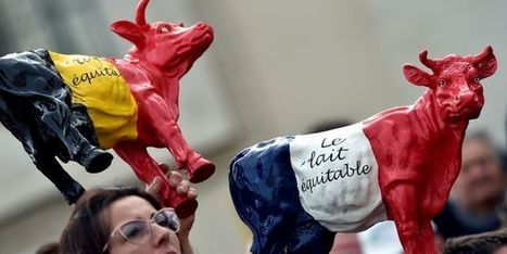 Crise agricole: les exploitants français devront patienter | Production porcine | Scoop.it