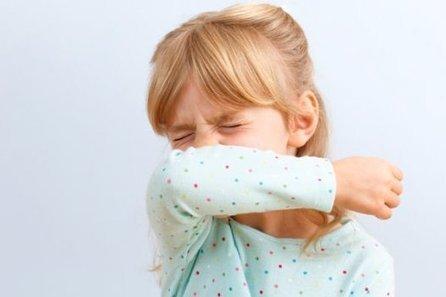 Trop d'allergènes dans l'habitat intérieur provoque des allergies   Toxique, soyons vigilant !   Scoop.it